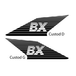 bx-custod-2